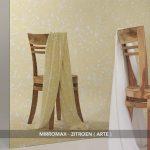 Mirromax Arte - Zitroen