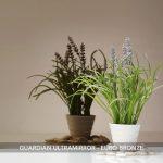 Guardian-Ultramirror-Euro-Bronze