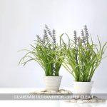 Guardian-Ultramirror-Super-Clear